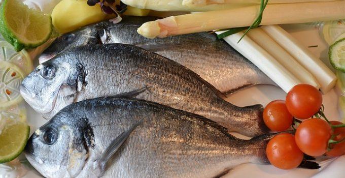 Pesce e Fertilità